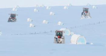 compressed natural snow bales